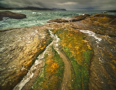 Rough Water (Ray Mines Photography) Tags: oregon cape perpetua pacific ocean sea water beach coast line coastal storm weather fog rough ngc