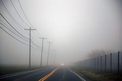 Morning Mist (milfodd) Tags: april 2019 vp road mist