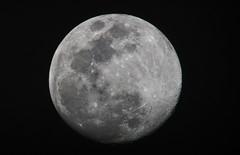 AlmostFullMoonApril17 (ahwatukeebauer) Tags: moon almostfullmoon astronomy