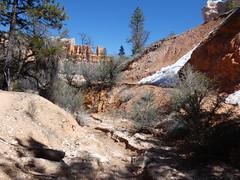 P1000283 (odetojoy24) Tags: utah bryce national parks streams