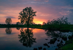 Gennep @ sunset (RigieNL) Tags: limburg gennep europe europa sun sundown sony sonya6000 sunset sky sunray sunrays sunrise water waterscape wandering wander nature natuur landscape landscapelovers landschap purple pink cloud clouds cloudporn tree river maas nederland netherlands thenetherlands