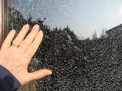 Thursday, 18th, 2019, Broken glass IMG_5777 (tomylees) Tags: essex morning spring april 2019 18th thursday carol cracked window door