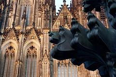 Cologne Cathedral at the golden hour 3 (hermann.kl) Tags: köln cologne kölnerdom colognecathedral goldenestunde goldenhour kreuzblume