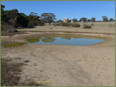Halfway through autumn and still very dry (margaretpaul) Tags: wildlifepark wildlife phillipisland dry waterhole