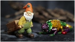 Mini-Gnome (N.the.Kudzu) Tags: tabletop stilllife miniature garden gnome enameled lizard canoneosm mirrorless helios442 ringlight photoscape home russianlens