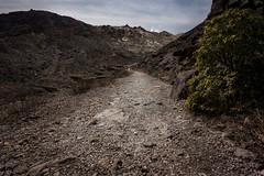 20190416a73_7155 (Gansan00) Tags: ilce7m3 α7ⅲ sony japan 大分 oita 日本 九重連峰 登山 landscape snaps ブラリ旅 04月 fe24105f4 trekking travelphotography