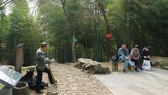 Meijiawu to Longjing Tea Plantation Hiking Trail (Josh Khaw) Tags: people chatting hangzhou china hiking trail tea plantation