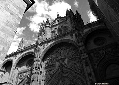 Catedral Nueva de Salamanca, España. (Caty V. mazarias antoranz) Tags: spain españa catedrales homenajeanotredame recordandoanotredame parís conparís catedralesespañolas monumentosdeespaña semanasanta religión ateísmo arte solidaridad recuerdo hermandad reconocimiento arquitectura arteenpiedra