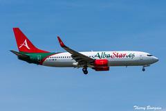[ORY] AlbaStar Boeing 737-800 EC-NAB (thibou1) Tags: thierrybourgain ory lfpo orly spotting aircraft airplane nikon d810 tamron sigma albastar boeing boeing737 b737 b737800 b738 ecnab landing djerba transavia