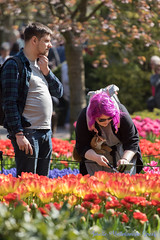 DN9A7579 (Josette Veltman) Tags: keukenhof lisse flowers dutch bloemen toeristisch canon nederland tulpen