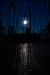 PIG_4715 (Thorsten-S) Tags: night moon sea water schilf niedersachsen stars lower saxony
