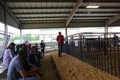 Faulkner-Co-Ag-Roundup_0220 (uacescomm) Tags: universityofarkansassystemdivisionofagriculture faulkner county agricultural roundup animals kids learning