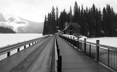 Happy Fence Friday Flickr Folks (Mr. Happy Face - Peace :)) Tags: bw black white fence hff fenced emerald lake bc canada lodge spring trees mountains clouds snowing snowcaps art2019