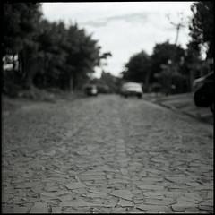 Empedrado (mavricich) Tags: film foma lomography monocromo monocromático kiev 6c vega dof calle street