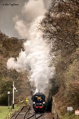 IMG_6900-Edit_edited-1 (Bev Cappleman) Tags: nymr goathland northyorkshiremoors train steam railway heritagerailway northyorkshiremoorsrailway