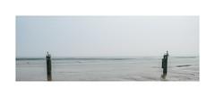 Mudscape (Peter-Durrant) Tags: xt2 fujifilm cardiffbay cardiff wales uk barrage lowtide mud sea coast water