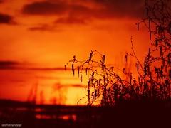 Es ist nicht die Sonne die untergeht, sondern die Welt die sich weiterdreht. (It is not the sun that goes down, but the world that continues to turn.) (skruemel86) Tags: sonnenuntergang sunset ilmenau thüringen panasonic lumix fz82