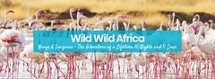 South Africa wildlife tours (signaturetours.in) Tags: wildlifeafrica southafricawildlifetours