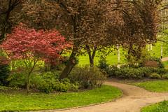 Miller Park (Gary S Bond) Tags: great britain united kingdom 2019 a65 alpha april centre city england lancashire miller north northern park preston shabbagaz sony uk west greatbritain unitedkingdom