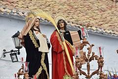 DSC_6155 (M. Jalón) Tags: mañana semana santa porcuna procesión ntro nuestro padres jesús nezareno verónica san juan 2019 pasión religión viernes santo