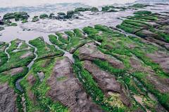 老梅 (aelx911) Tags: a7rii a7r2 sony gmaster fe2470mmf28gm fe2470 fe2470gm landscape ocean taiwan taipei greenreef nature 台灣 台北 老梅 石門 綠石槽