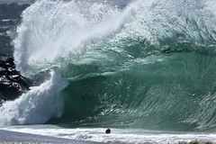 fullsizeoutput_590d (supercrans100) Tags: the wedge big waves so calif beaches surfing body bodyboarding skim boarding dk