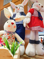 Feliz Páscoa ! (Arimm) Tags: arimm coelho rabbit conejo coniglio lapin easter ostern pasqua pâques páscoa