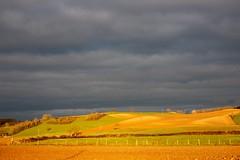 France - nord Isère - paysages - landscape - couleurs printanières (Jean-Philippe Le Royer) Tags: street landscape lightroom atmosphere campagne sunrise canon canong1x isere cielorageux canong1xiii pland'eau