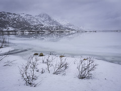 The thaw begins (adam_pierz) Tags: winter norway lofoten ice mountains water olympusomd micro43 microfourthirds