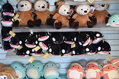 DSC_9365 (earthdog) Tags: 2019 nikon d5600 nikond5600 18300mmf3563 needstags needstitle themepark amusementpark greatamerica santaclara shopping shop store animal stuffedanimal softie