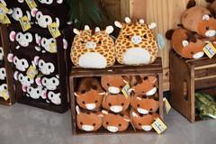 DSC_9354 (earthdog) Tags: 2019 nikon d5600 nikond5600 18300mmf3563 needstags needstitle themepark amusementpark greatamerica santaclara shopping shop store animal stuffedanimal softie