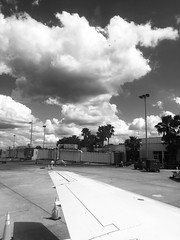 Ready for takeoff (noitalsnarT_nI_tsoL) Tags: tropical trafficcone palms concrete tarmac light wing airplane plane sky clouds bw blackandwhite blancoynegro