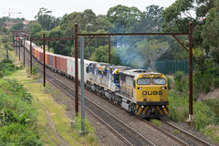 A Corporate and Hired (Henry's Railway Gallery) Tags: 1101 cm3303 cm3312 1100class freighttrain containertrain qubelogistics 1311 enfield sydney newsouthwales australia