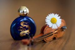 still-life 20-04-2019 010 (swissnature3) Tags: stilllife macro flowers flacon violin
