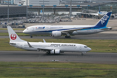 JA302J B737-800 Japan Airlines and JA878A B787-8 ANA (JaffaPix +5 million views-thanks...) Tags: ja302j b737800 japanairlines jal ja878a b7878 b788 boeing dreamliner ana allnippon jaffapix davejefferys tokyoairport japan aircraft airplane aeroplane aviation flying flight runway airline airliner hnd haneda tokyohaneda hanedaairport rjtt planespotting 737 b737 b738