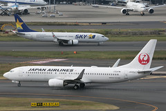 JA323J B737-800 Japan Airlines and JA73NU B737-800 Skymark (JaffaPix +5 million views-thanks...) Tags: ja323j b737800 japanairlines jal ja73nu skymark sky jaffapix davejefferys tokyoairport japan aircraft airplane aeroplane aviation flying flight runway airline airliner hnd haneda tokyohaneda hanedaairport rjtt planespotting 737 b737 b738 boeing