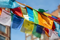 Buddhist Prayer Flags in Bogardus Garden, Tribeca, New York, USA (JayDeWinne) Tags: buddhistprayerflags bogardusgarden tribeca newyork usa hudsonstreet colourful tibetan nepal prayerflags cultureinstallationart publicart color blue green red yellow buddhism travel tibet cloth silk asia fabric
