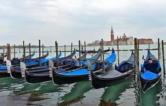 Venise gondoles (Venizia gondolas) Venice (Jean-Yves Ledy) Tags: venise venezia gondoles canal lagune laguna eau mer poteaux gondolier chapeau tour architecture italie amour amoureux
