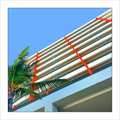 Look Up ! (Timothy Valentine) Tags: 2017 clichésaturday dutchangle desauturated sky vacation palm hotel 0417 sanjuan puertorico