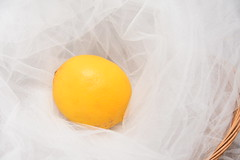 Some bunny left this... (Robin Penrose) Tags: 201904 smileonsaturday yellowonwhite yellow lemon project365 365the2019edition 3652019 day110365 20apr19