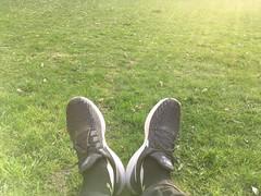 Lying on the grass (rotabaga) Tags: sverige sweden göteborg gothenburg iphone gräs grass