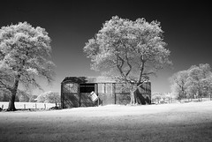 Barn, Whalley, Clihteroe. (Bobfrance) Tags: barn whalley clitheroe lancashire infrared landcape infraredconvertedcamera nikond80 720nm voigtlander20mmsliicolourskopar