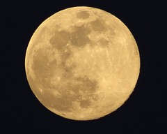 Full Moon rising 041819 (apfrsscf) Tags: canonsl1 fullmoon astrophotography