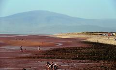 Down on the beach (billnbenj) Tags: barrow cumbria walneyisland earnsebay beach lowtide