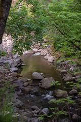 DSF_6840-1 (Gedawei 葛大为) Tags: nikon alumrock creeks california northerncalifornia sf bay area sanjose unitedstatesofamerica