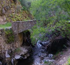 DSF_6812-1 (Gedawei 葛大为) Tags: nikon alumrock creeks california northerncalifornia sf bay area sanjose unitedstatesofamerica
