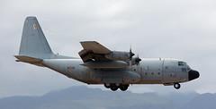C-130 | T.10-09 | LPA | 20190408 (Wally.H) Tags: lockheed l100 hercules c130 t1009 3106 ejércitodelaireespañol spanishairforce lpa gclp grancanaria laspalmas airport