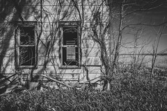 Abandoned Home Monochrome (Notley Hawkins) Tags: httpwwwnotleyhawkinscom notleyhawkinsphotography notley notleyhawkins 10thavenue 2019 afternoon newtopographic topographic architecture home house abandoned riverbottoms bottomland missouririverbottoms monochrome blackandwhite april chamoismissouri shadows rural outdoors osagecounty osagecountymissouri