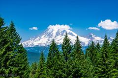Mount Rainier (Atif_M_Khan) Tags: photography 500px clouds landscape mountrainier mountain nature outdoors pnw pentax pentaxk3 rainier seattle travel washinton mountains park snowcapped snow scenery pine summer summit