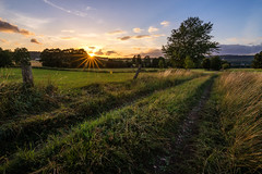 Rural Sunset (artmobe fotografie) Tags: sonnenuntergang felder wiesen baum hessen nordhessen hessisch lichtenau fürstenhagen